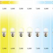 Hier ziet u het verschil tussen warm witte (2700K) en witte (6500K) LED lampen. Warm wit geeft gezelliger licht, maar professionals kiezen doorgaans voor wit, omdat dit het daglicht het best benadert en daarmee kleur echter is.